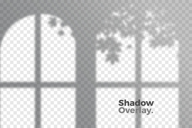 Grey overlay effect of transparent shadows concept