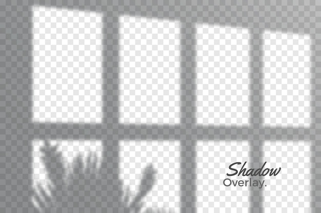 Grey overlay effect of transparent shadows theme