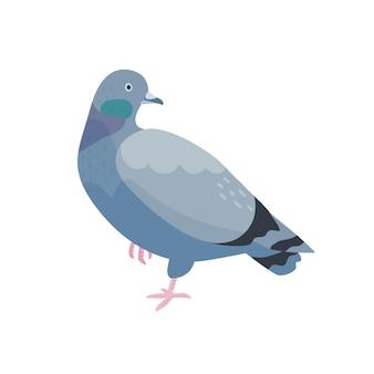 灰色の鳩フラットベクトルイラスト。暗い羽を持つ鳥。片足で立っている羽の鳩。通りの動物、野生生物。白い背景で隔離の小さなくちばしを持つかわいい都市バーディー。