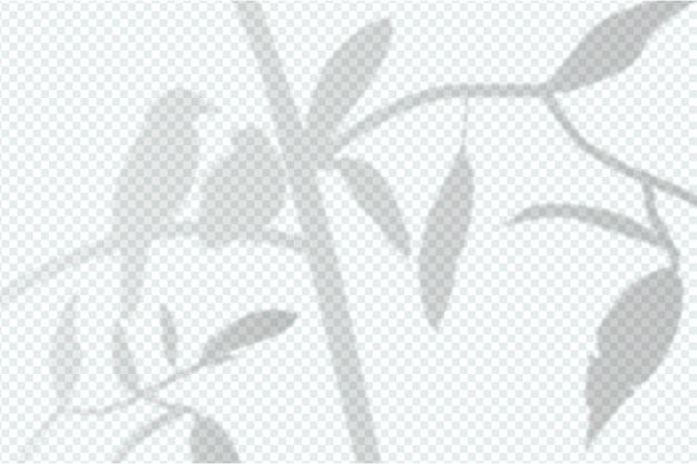 灰色の影のオーバーレイ効果のデザイン