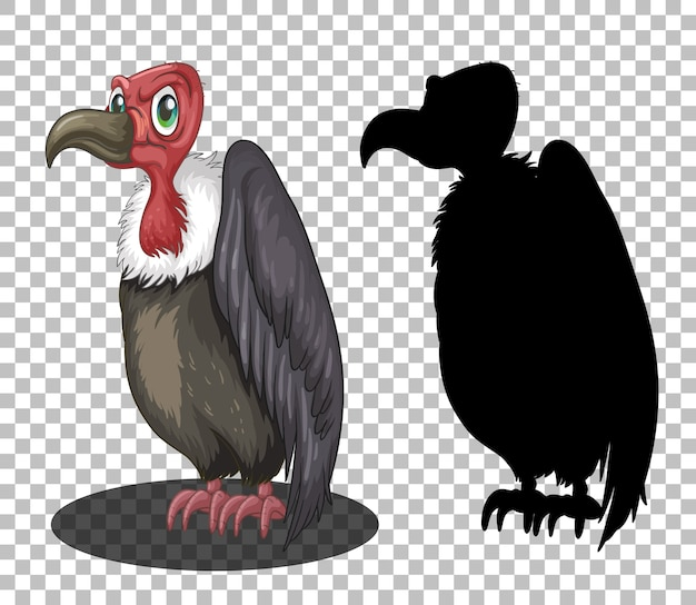 Griffon vulture cartoon character with its silhouette