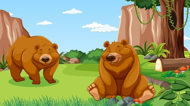 Grizzly bear or brown bear in forest or rainforest scene with many trees