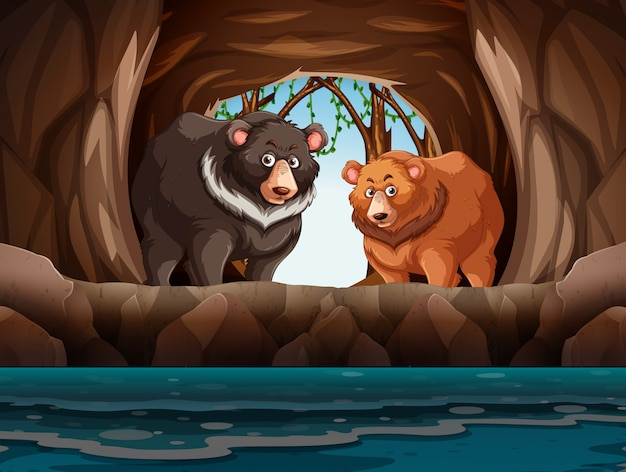 Grizzly bears living in the cave