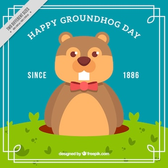 Groundhog day since 1886 background