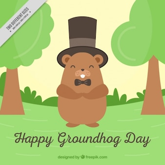 Groundhog day background with top hat
