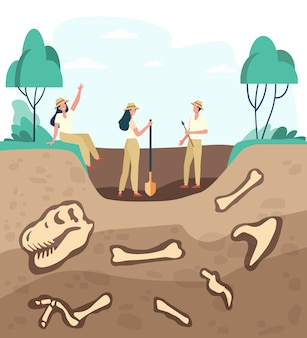 Group of archeologists discovering fossils, digging ground with dinosaur bones. vector illustration for archeology, paleontology, science, expedition concept