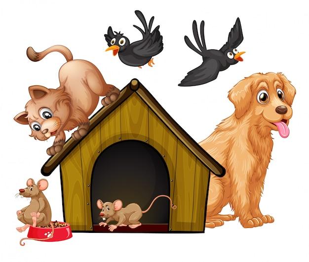 Gruppo di simpatici animali personaggio dei cartoni animati