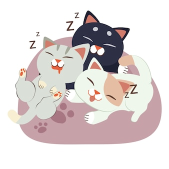A group of cute character cat sleeping on the beanbag