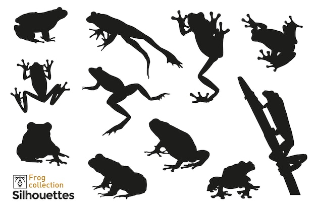 Group of  frog silhouettes jumping, climbing a plant. small animal icons for your .
