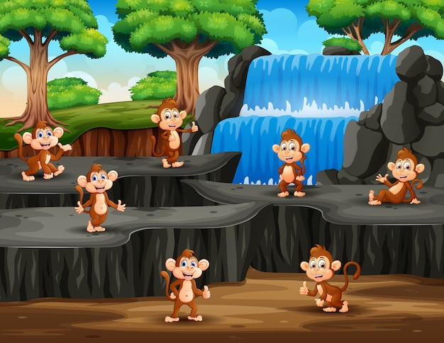 Group of monkeys on the waterfall scene