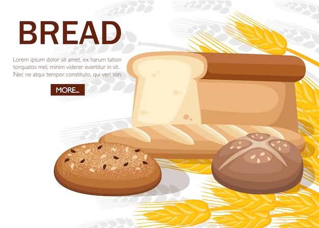 パン屋さんのパンのグループ。小麦パン、フレンチバゲット、チャバタ、トーストパン。パン屋のコンセプトデザイン。ライ麦と白い背景の平らなベクトルイラスト。ウェブサイトや広告のデザイン。