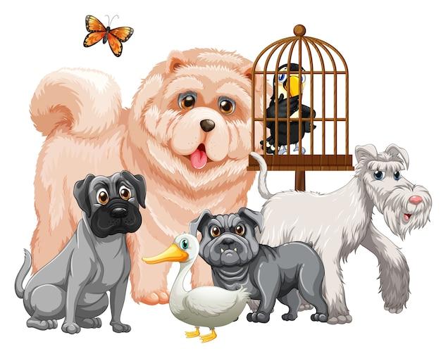 分離されたかわいい動物漫画のキャラクターのグループ