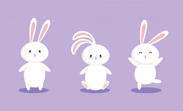귀여운 토끼 캐릭터의 그룹