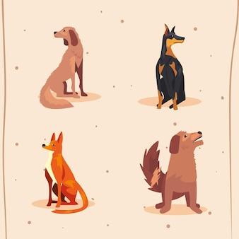 개 애완 동물의 그룹