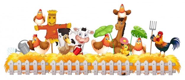 Группа домашних животных на ферме изолирована