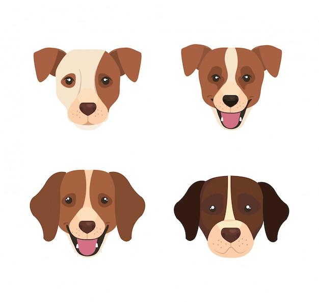 Группа значков головы собак животных