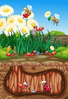自然界の昆虫のグループ