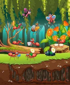 Группа насекомых в природе