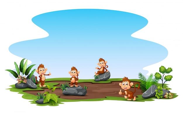 外で自然を楽しむ猿のグループ