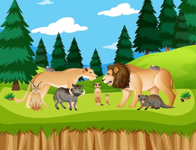 森のシーンで野生のアフリカの動物のグループ