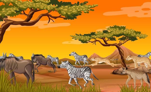 Группа диких африканских животных в лесной сцене