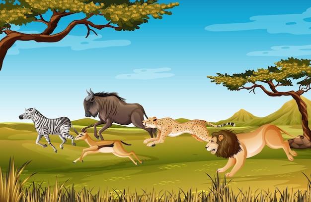 숲 장면에서 야생 아프리카 동물의 그룹