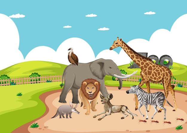 동물원 현장에서 아프리카 야생 동물의 그룹