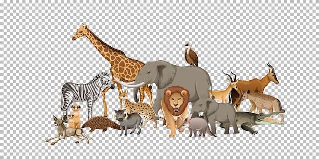 Группа диких африканских животных на прозрачном фоне