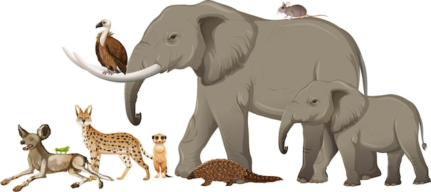 白い背景の上の野生のアフリカの動物のグループ