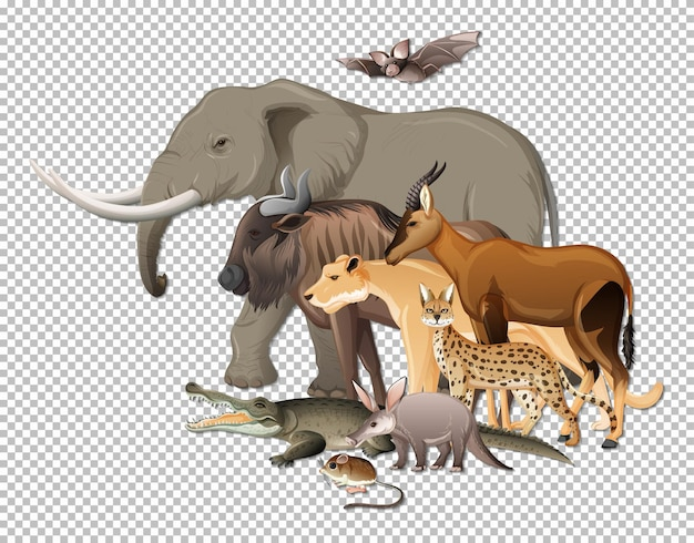 透明な背景に野生のアフリカの動物のグループ
