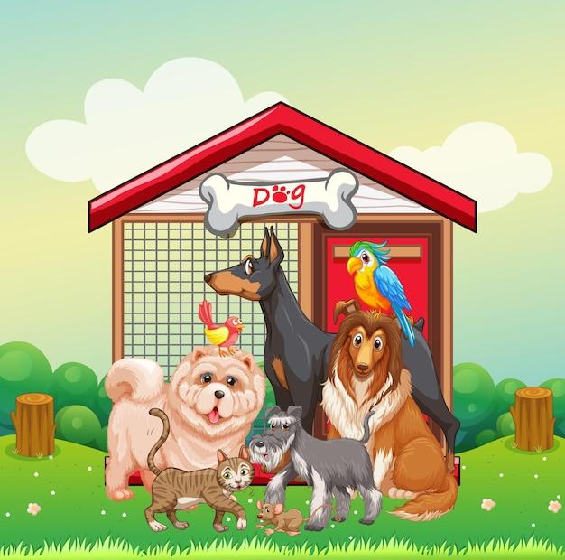 Gruppo di animali da compagnia nella scena del parco