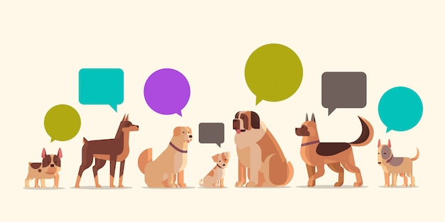 Group of purebred dogs with chat bubble speech furry human friends home pets collection concept cartoon animals horizontal