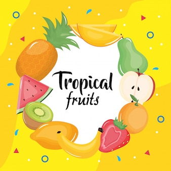 Group of tropical and fresh fruits circular frame