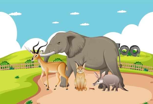 Gruppo di animali selvatici africani nella scena dello zoo