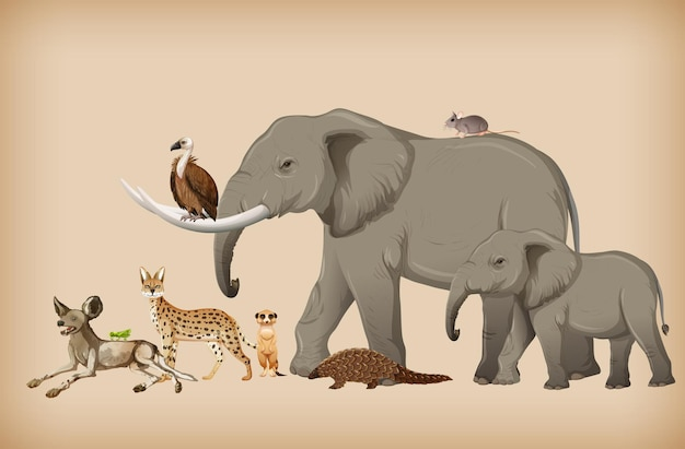Gruppo di animali selvatici sullo sfondo