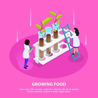 Growing of artificial food isometric composition with sprouts in laboratory beakers on pink