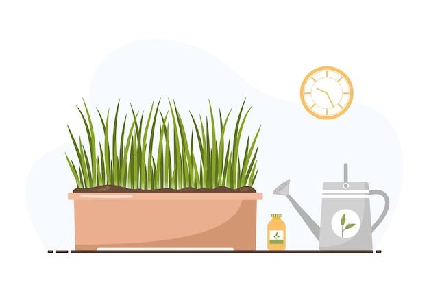 창턱에 원예 식물 재배