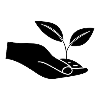 Growing leaves in the hand can be used for natural farm product organic food vegan products