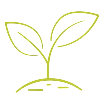 Growing plant two green leaves environmental protection concept eco natural farm concept