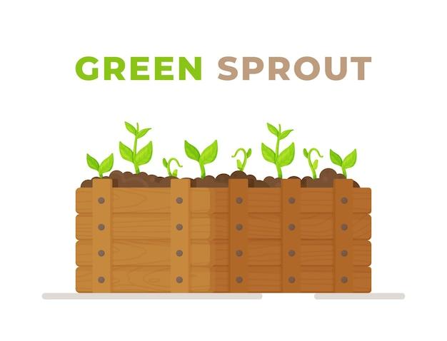 성장하는 식물. 야채 재배. 당근 식물의 성장. 삽화.
