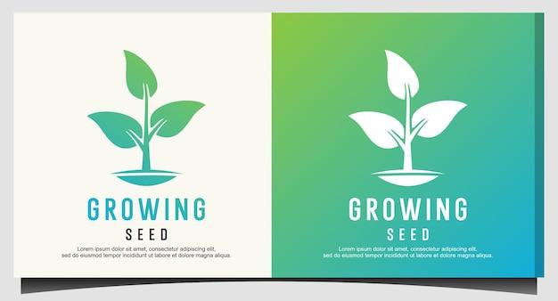 Growing seed logo design vector
