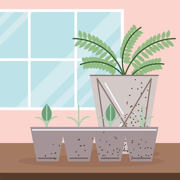성장하는 새싹과 관엽 식물