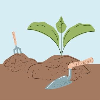 Рост плантации листвы