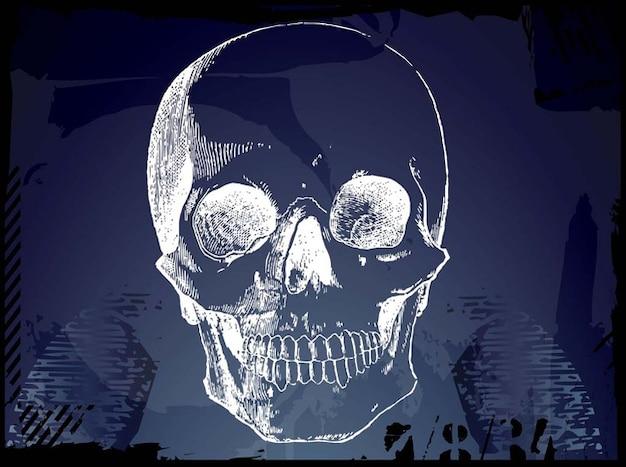 Grunge pirate skull sketch