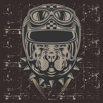 Grunge style pit bull wearing helmet retro