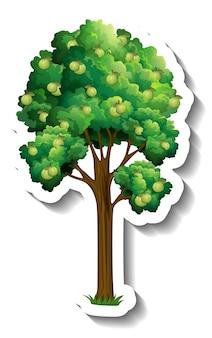白い背景の上のグアバの木のステッカー