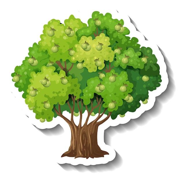 Guava tree sticker on white background