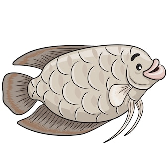 Gurame fish cartoon