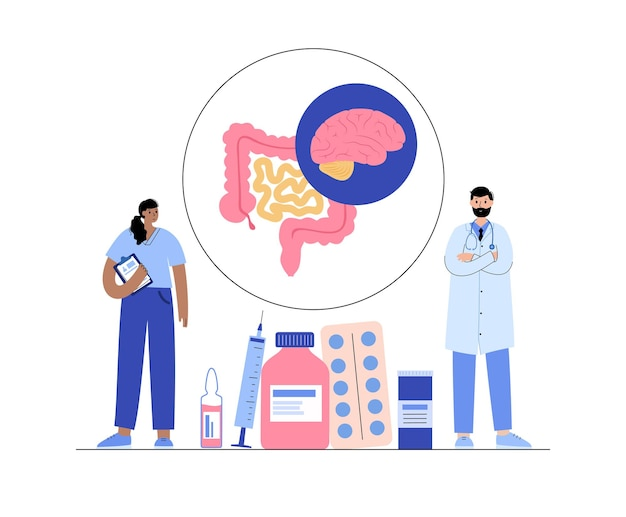 Gut brain connection, human microbiome. gastroenterology clinic. enteric nervous system, small and large intestine. signals from brain to digestive tract. colon, bowel and cerebrum vector illustration