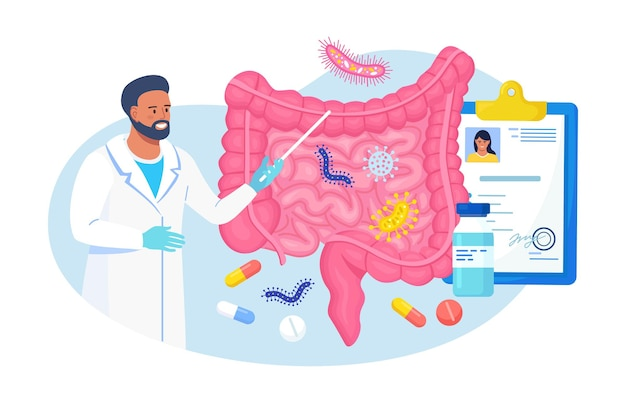 Gut microorganisms, friendly flora, gastrointestinal microbes abstract digestive stomach living organisms for healthy life. doctor examining gastrointestinal tract, bowel, digestive system, intestine
